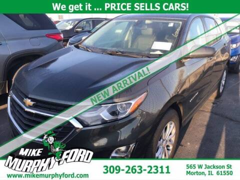 2019 Chevrolet Equinox for sale at Mike Murphy Ford in Morton IL