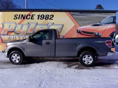 2011 Ford F-150 for sale at Pyles Auto Sales in Kittanning PA
