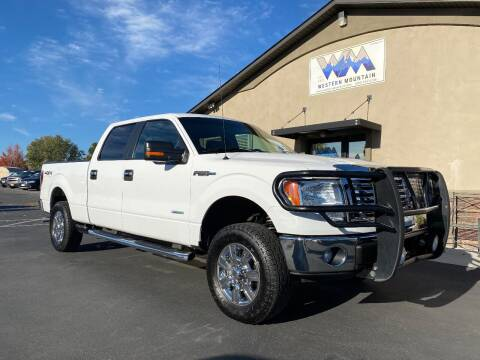2012 Ford F-150 for sale at Western Mountain Bus & Auto Sales in Nampa ID