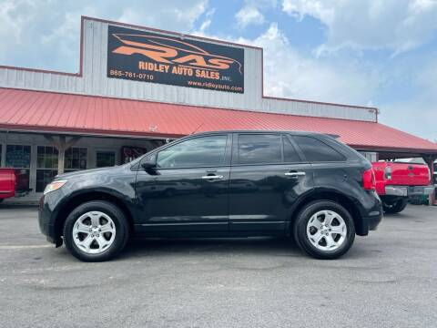 2011 Ford Edge for sale at Ridley Auto Sales, Inc. in White Pine TN