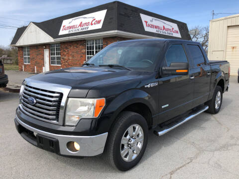 2011 Ford F-150 for sale at tazewellauto.com in Tazewell TN