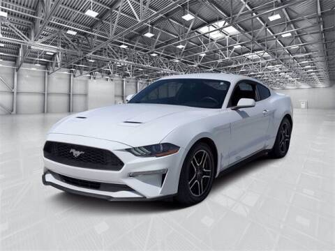 2019 Ford Mustang for sale at Camelback Volkswagen Subaru in Phoenix AZ