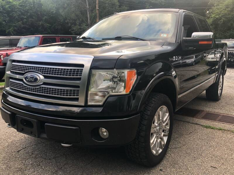 2010 Ford F-150 for sale at AMA Auto Sales LLC in Ringwood NJ