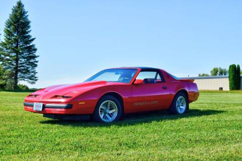 1989 Pontiac Firebird for sale at Hooked On Classics in Watertown MN