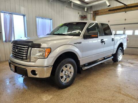 2012 Ford F-150 for sale at Sand's Auto Sales in Cambridge MN