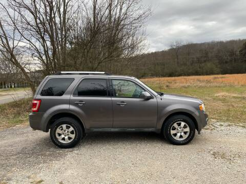 2010 Ford Escape for sale at Tennessee Valley Wholesale Autos LLC in Huntsville AL
