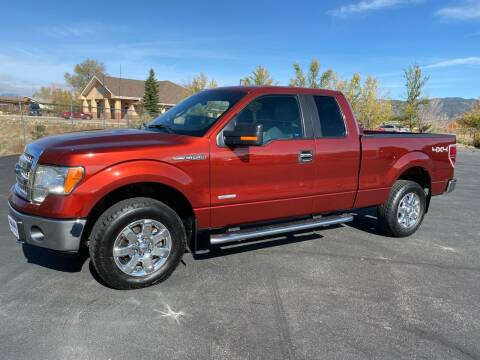 2014 Ford F-150 for sale at Salida Auto Sales in Salida CO