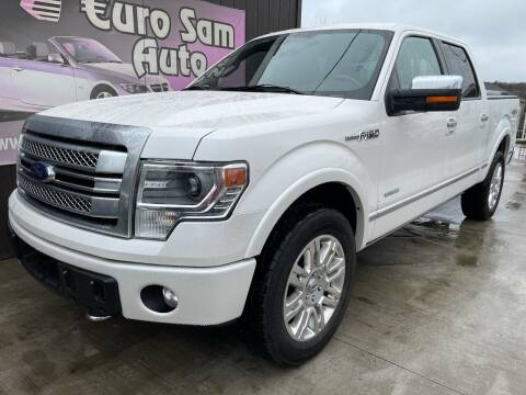 2014 Ford F-150 for sale at Euro Auto in Overland Park KS