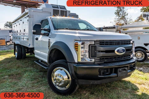 2019 Ford F-450 Super Duty for sale at Fruendly Auto Source in Moscow Mills MO