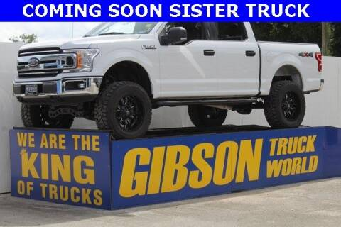 2020 Ford F-150 for sale at Gibson Truck World in Sanford FL