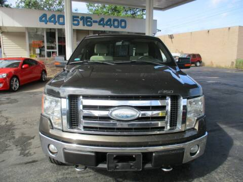 2009 Ford F-150 for sale at Elite Auto Sales in Willowick OH