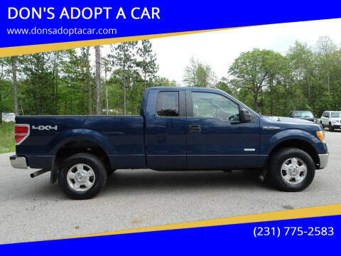 2013 Ford F-150 for sale at DON'S ADOPT A CAR in Cadillac MI