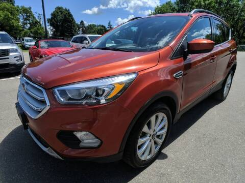 2019 Ford Escape for sale at Ace Auto in Jordan MN