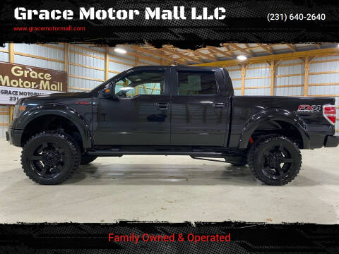 2014 Ford F-150 for sale at Grace Motor Mall LLC in Traverse City MI