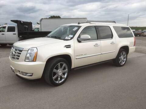 2011 Cadillac Escalade ESV for sale at Its Alive Automotive in Saint Louis MO