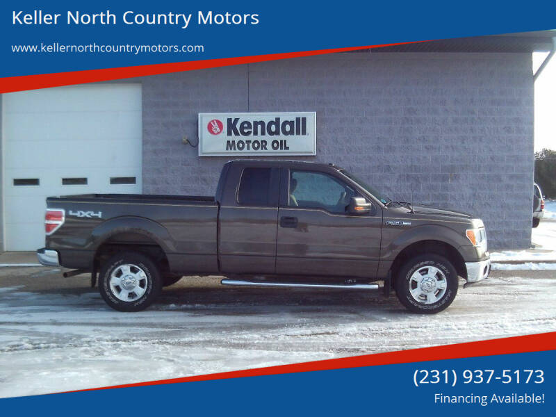 2009 Ford F-150 for sale at Keller North Country Motors in Howard City MI