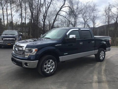 2014 Ford F-150 for sale at AFFORDABLE AUTO SVC & SALES in Bath NY