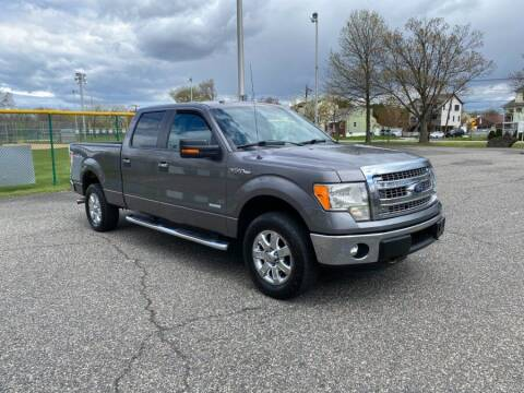 2013 Ford F-150 for sale at Cars With Deals in Lyndhurst NJ