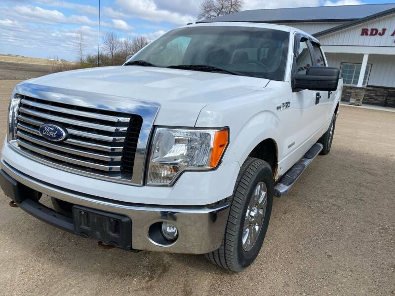 2011 Ford F-150 for sale at RDJ Auto Sales in Kerkhoven MN
