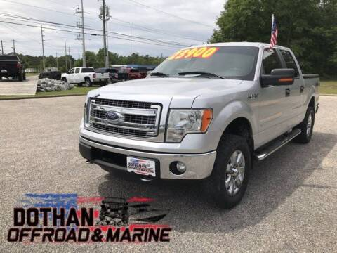 2014 Ford F-150 for sale at Mike Schmitz Automotive Group in Dothan AL