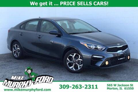 2019 Kia Forte for sale at Mike Murphy Ford in Morton IL