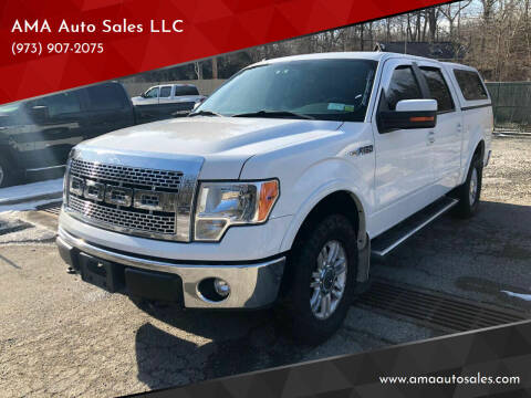 2011 Ford F-150 for sale at AMA Auto Sales LLC in Ringwood NJ