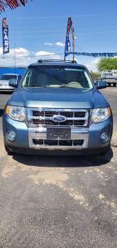2010 Ford Escape for sale at Juniors Auto Sales in Tucson AZ