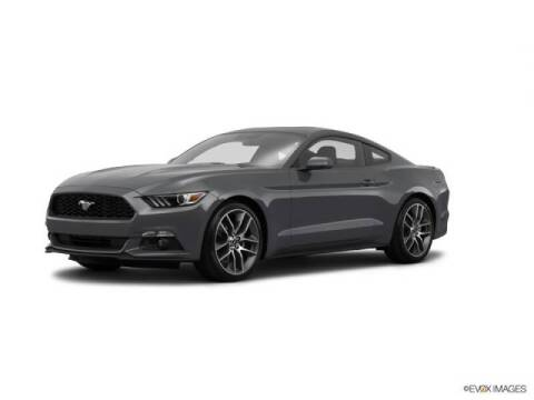 2015 Ford Mustang for sale at FREDYS CARS FOR LESS in Houston TX
