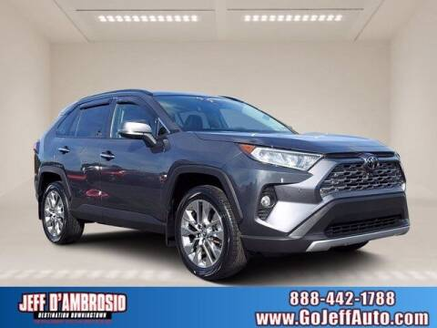 2019 Toyota RAV4 for sale at Jeff D'Ambrosio Auto Group in Downingtown PA