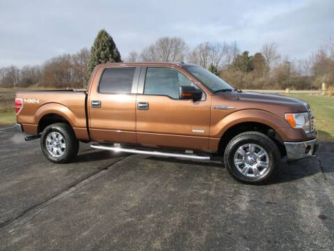 2012 Ford F-150 for sale at Crossroads Used Cars Inc. in Tremont IL