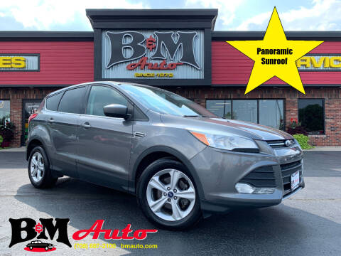2014 Ford Escape for sale at B & M Auto Sales Inc. in Oak Forest IL