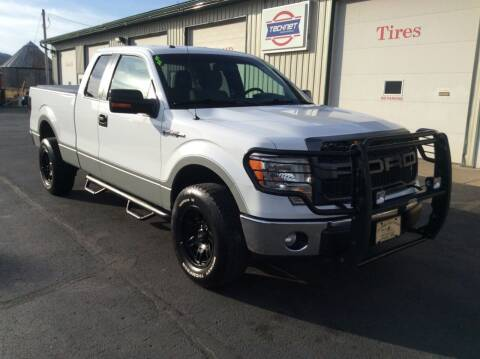 2014 Ford F-150 for sale at TRI-STATE AUTO OUTLET CORP in Hokah MN