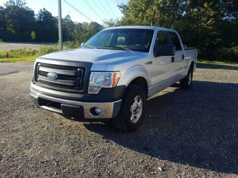 2014 Ford F-150 for sale at Complete Auto Credit in Moyock NC