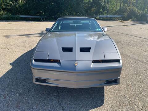 1989 Pontiac Firebird for sale at George Strus Motors Inc. in Newfoundland NJ