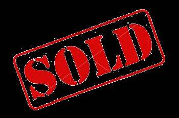 2020 TAOMOTORS RHINO for sale at Trust Capital MotorSports Inc. in Covington GA