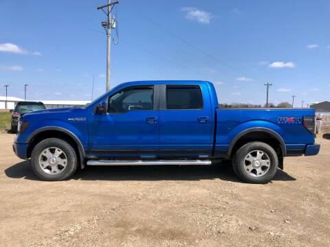 2010 Ford F-150 for sale at TnT Auto Plex in Platte SD