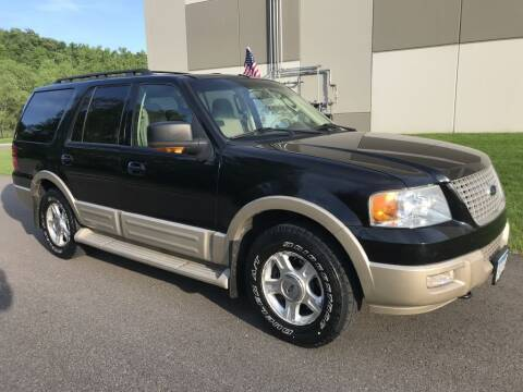2006 Ford Expedition for sale at Angies Auto Sales LLC in Newport MN