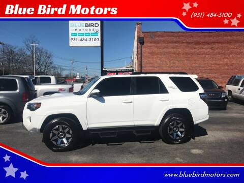 2019 Toyota 4Runner for sale at Blue Bird Motors in Crossville TN