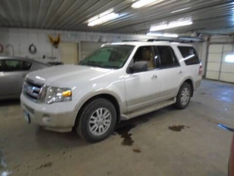 2009 Ford Expedition for sale at SWENSON MOTORS in Gaylord MN