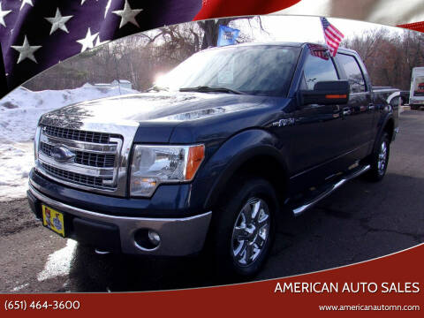 2014 Ford F-150 for sale at American Auto Sales in Forest Lake MN