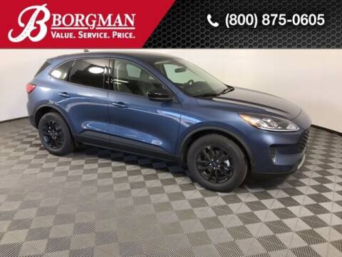 2020 Ford Escape Hybrid for sale at BORGMAN OF HOLLAND LLC in Holland MI