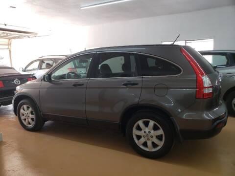 2009 Honda CR-V for sale at Best Royal Car Sales in Dallas TX