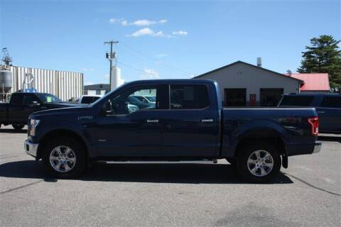 2017 Ford F-150 for sale at SCHMITZ MOTOR CO INC in Perham MN