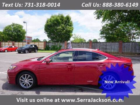 2016 Lexus ES 300h for sale at Serra Of Jackson in Jackson TN