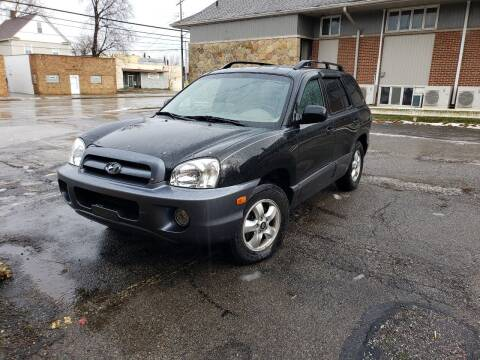 2006 Hyundai Santa Fe for sale at USA AUTO WHOLESALE LLC in Cleveland OH