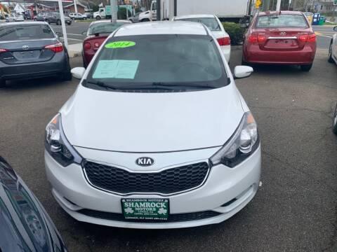 2014 Kia Forte5 for sale at Park Avenue Auto Lot Inc in Linden NJ