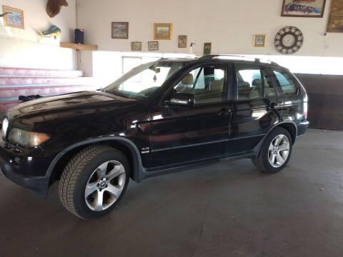 2004 BMW X5 for sale at PYRAMID MOTORS - Pueblo Lot in Pueblo CO