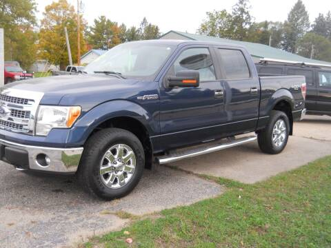 2014 Ford F-150 for sale at Shaw Motor Sales in Kalkaska MI