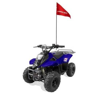 2021 OFFROAD MALL 1092 110cc Youth ATV for sale at A C Auto Sales in Elkton MD