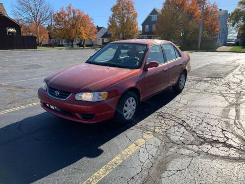 2002 Toyota Corolla for sale at USA AUTO WHOLESALE LLC in Cleveland OH